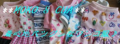Img_8561_2